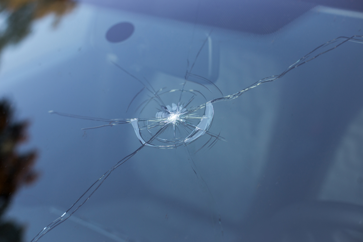 Windshield Auto Mobile Repair